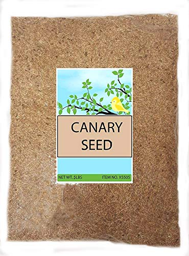 Sweet Harvest Canary Seed Alpiste Bird Food, 5 lbs Bag