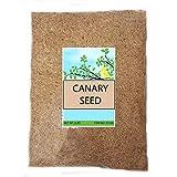 Sweet Harvest Canary Seed Alpiste - Comida para pájaros