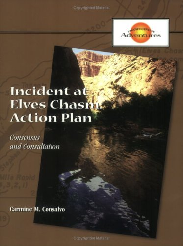 Incident at Elves Chasm Action Plan PDF
