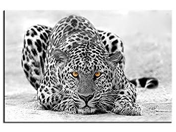Hexoa Cadre Déco Animaux Leopard Noir Et Blanc Top Vente 1a