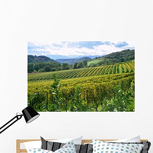 French Winery Pyrenese Wall Mural by Wallmonkeys Peel and Stick Graphic (48 in W x 32 in H) WM234194