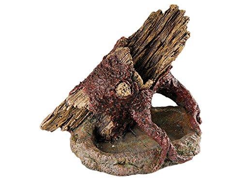 Terrariumdeko Baumstamm auf Stein als Wasser- / Futtertrog