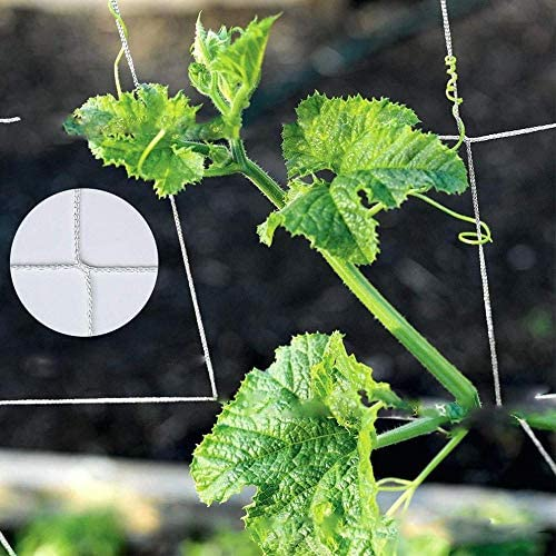 Baoblaze つる栽培ネット 園芸 農業 家庭菜園 ガーデニング
