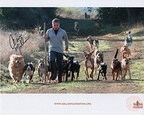 CESAR MILLAN HAND SIGNED 8x10 COLOR PHOTO+COA AWESOME POSE DOG WHISPERER by HollywoodMemorabilia
