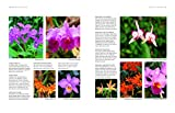 Orchids: A Practical Guide for Gardeners: With