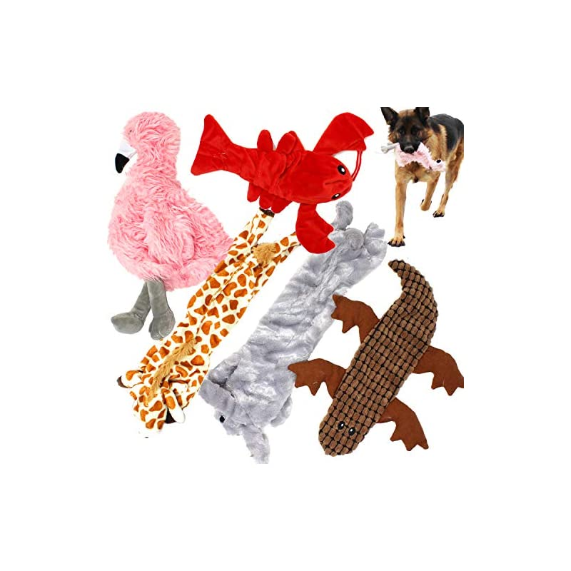dog supplies online jalousie 5 pack dog squeaky toys no stuffing dog plush toy for small medium large dog pets
