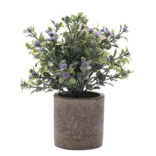 HC STAR Artificial Plant Potted Mini Fake Plant Decorative Lifelike Flower Green Plants - 1102 (Round pot, Purple)
