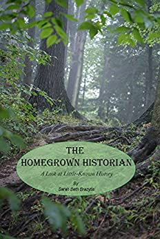 The Homegrown Historian: A Look at Little Known History (The Little Known Story Book 1) by [Brazytis, Sarah Beth]