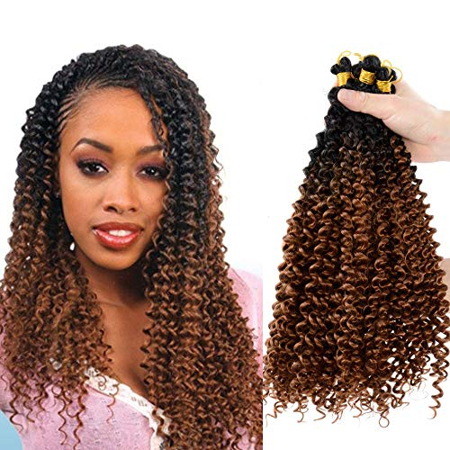 5pack Ombre water wave crochet braid hair 20inch Afro Kinky Twist Braids for Passion Twist Crochet Braiding Hair Extensions (20inch, T30)