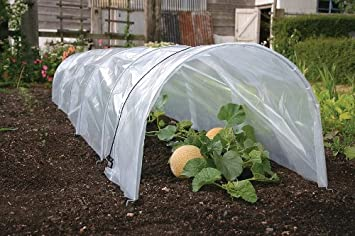 Haxnicks Easy Polytunnel ready assembled plant protection grow tunnel 3m long