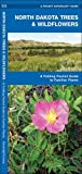 North Dakota Trees & Wildflowers: A Folding Pocket Guide to Familiar Species (A Pocket Naturalist Guide)