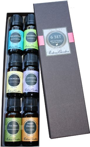 Top 6 100% Pure thérapeutique Sampler année de base Essential Oil cadeau Set-6/10 ml (eucalyptus, lavande, citronnelle, orange, menthe poivrée, Tea Tree)