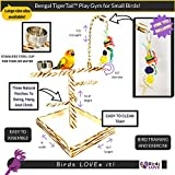Birds LOVE Bird Play Gym Tabletop w Cup, Toy Hanger and Toy, Bengal TigerTail Stand - Small