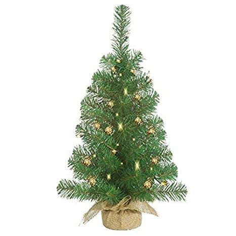 Lighted Christmas Pine Tree 23 Inches High with Battery Operated Timer and  Warm White LED Lights - Amazon.com: Lighted Christmas Pine Tree 23 Inches High With Battery