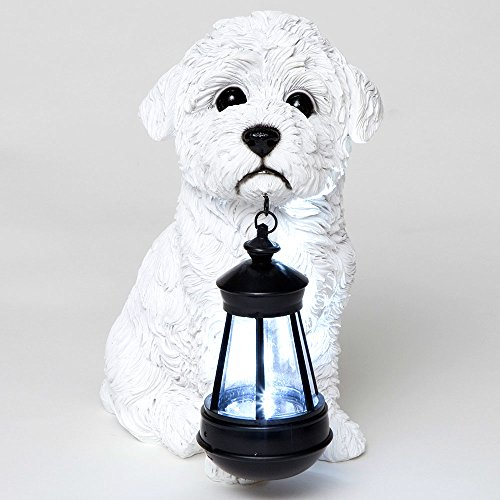 Bits and Pieces - Bichon Solar Lantern - Solar Powered Garden Lantern - Resin Dog Sculpture with LED Light - Outdoor Lighting and Décor