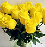 10pcs Real Touch Rose Simulated Fake Latex white/red/pink/yellow/champgne Roses 43cm for Wedding Party Artificial Decorative Flowers (yellow)