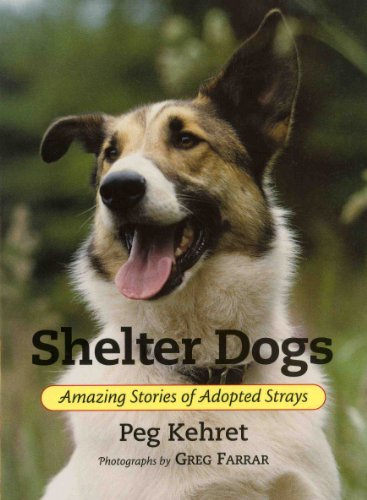 Shelter Dogs Amazing Stories of Adopted Strays