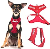 SERVICE DOG (Do Not Disturb/Dog Is Working) Red Color Coded Non-Pull Front and Back D Ring Padded and Waterproof Vest Dog Harness PREVENTS Accidents By Warning Others Of Your Dog In Advance (XS)