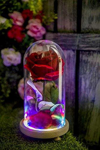 Red Velvet Rose Colorful Night Light In Glass Dome - Romantic Gift for Her | Movie Theme Party Wedding Decoration