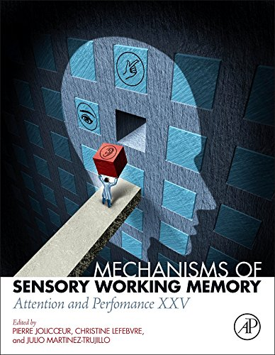 Mechanisms of Sensory Working Memory: Attention and Perfomance XXV by Jolicoeur Pierre