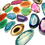 "12 (Twelve) Drilled Agate Slices -Assorted Agate Pendant Slice Drilled 2-3"" Agate Identification Card and a Rock Paradise COA (AM1B1)"