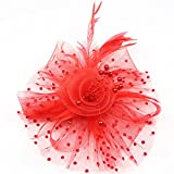 #3: Flower Cocktail Tea Party Headwear Feather Fascinators Top Hat for Girls and Women