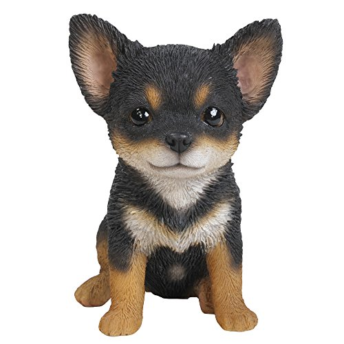 (Pacific Giftware Adorable Seated Chihuahua Puppy Collectible Figurine Amazing Dog Likeness Hand Painted Resin 6.5 inch Figurine Great for Dog Lovers Tabletop Decor)