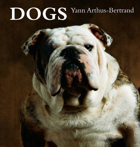 Read Online Dogs pdf epub