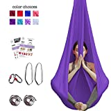Aum Active Aerial Yoga Hammock - Include Aerial Silk Fabric, Carabiners, Extension Straps, 30-Day Pose Guide - Premium Yoga Swing for Antigravity Exercises, Inversion & Sensory Therapy (Royal Purple)