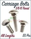 Paradise Harbor 3/8-16 Stainless Steel Carriage Bolts Stainless Steel Metal Carriage Bolts 2-1/2 Inch 50 Pcs