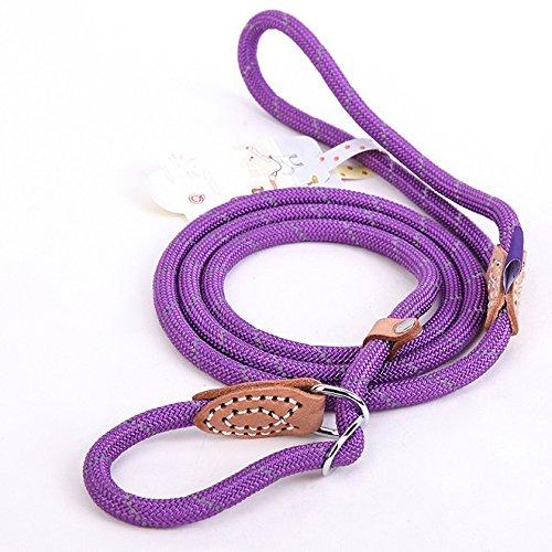 Coolrunner Pet Dog Leash Whisperer Cesar Slip Training Leash Lead Collar For Medium Large Dogs (L 1.4×150cm, Purple) by Coolrunner