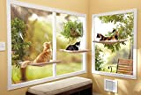 M-Aimee Sunny Seat Window-Mounted Cat Bed (One pack)