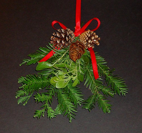 Fresh Large Real Mistletoe Christmas Holiday Kissing Decoration with California Redwood, Rosemary and Real Pine Cones with Hanging Ribbon