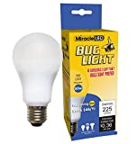 MiracleLED 605023 3W Bug Light Single-Pack Replacing Old, Hot 50W Incandescent Bulbs, Yellow