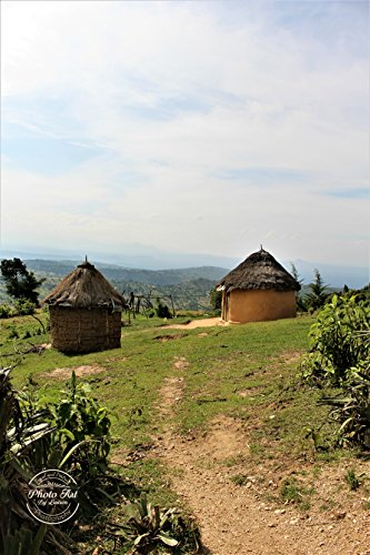 #592 African Mud Hut Landscape Signed Photo - Pictures Huts African