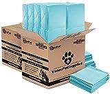 ValuePad 23'' x 24'' 28 gram Puppy Training Pads Pads, 896 Count