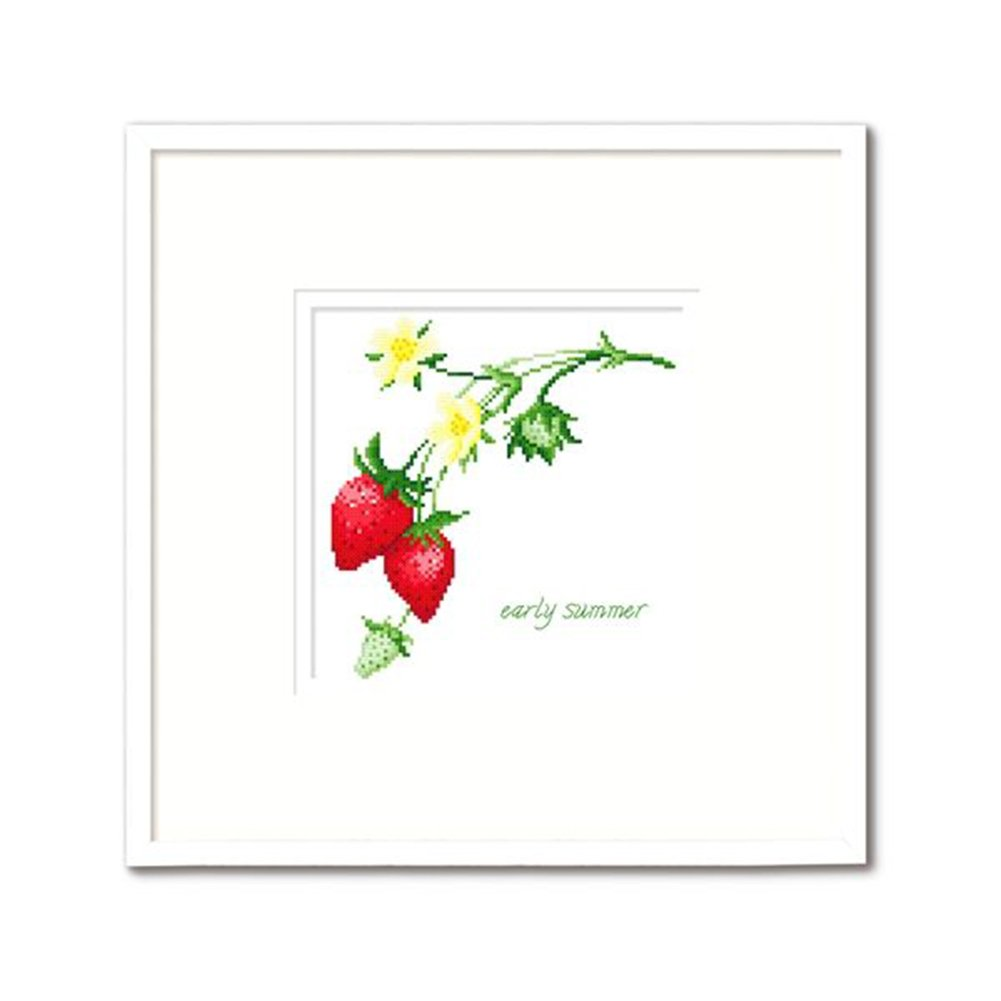 12.2 x 12.2 inches Blueberry DOMEI Stamped Cross Stitch Kit