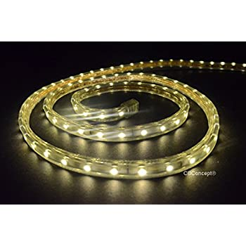 All Occasions Indoor Outdoor LED 16 FT Total Rope Light Home