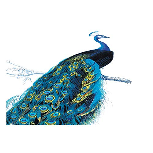 Libaoge Peacock Aquarium Background Double Sides, A Bird of Juno on The Branch Fish Tank Decor Sticker Wallpaper Vinyl Photo Adhesive Paper Poster Backdrop, 60.8