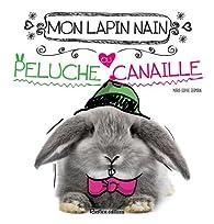 Mon lapin nain, peluche ou canaille ? par Marie-Sophie Germain
