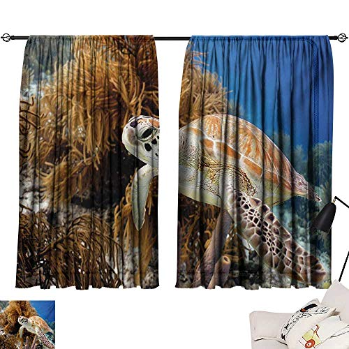 Davishouse Turtle Decor Curtains Coral Reef and Sea Turtle Close Up Photo Bonaire Island Waters Maritime Home Garden Bedroom Outdoor Indoor Wall -