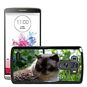 Hot Style Cell Phone PC Hard Case Cover // M00129535 Cat Mieze British Shorthair Pets // LG G3 VS985