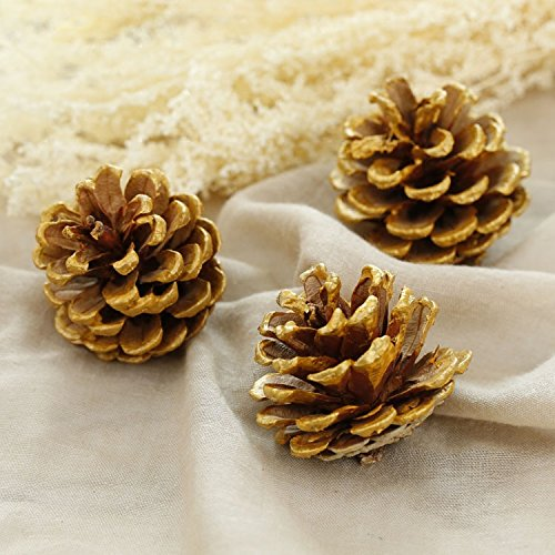 Real Pine Cone - 15-Piece Gold Tipped Real Natural Dried Pine Cones for Potpourri, Bowl Fillers, and Crafting, Unscented