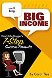 Small Blog, Big Income: One Niche Blogger's 7 Step Success Formula