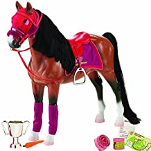 Our Generation Horse - Thoroughbred