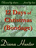 Book Cover for 12 Days of Christmas (Bondage) - full