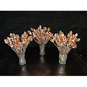 "Set of 24 Bright Copper Forever Roses #813"" I Love You"" Steampunk - Wedding Prom Graduation 7th Anniversary Regalo de Aniversario Hanukkah Kwanzaa Valentine's Mother's Day Christmas Gift ! 26"