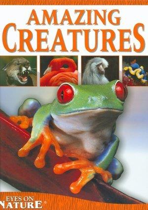 Read Online Amazing Creatures Eyes on Nature (Eyes on Nature) pdf epub