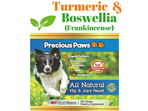 Precious Paws All Natural Hip & Joint Pain Relief for Dogs with Organic Turmeric, Frankincense, Glucosamine, MSM, and Chondroitin. 120 Beef Flavored Tablets