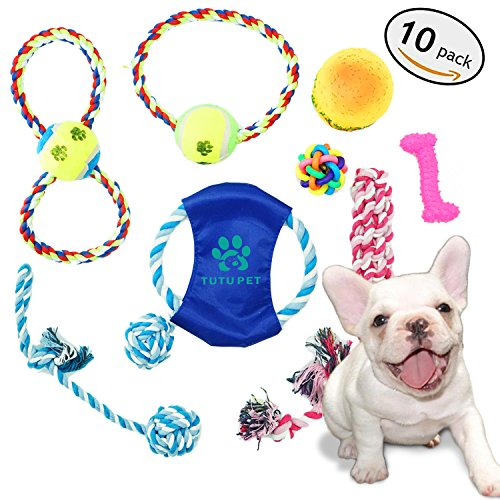 Pet Toys for Dogs 10 Pack Set Training Frisbee Puppy Chew Bone Squeaky Ball Rope Toys Teeth Cleaning Dog Toys Indestructible for Small and Large Dogs